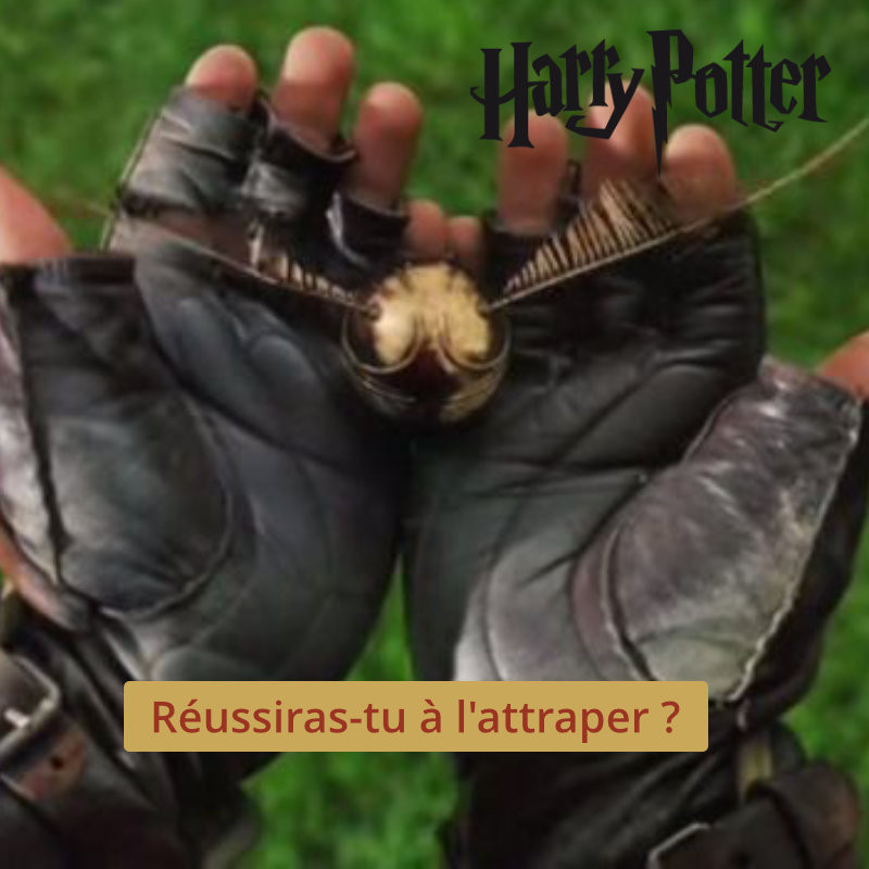 Harry Potter Vif d'Or